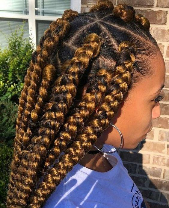 35 Dookie Braids Hairstyles Gorgeous Dookie Braid Styles