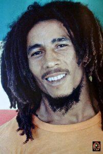 Bob Marley Freeform Locs